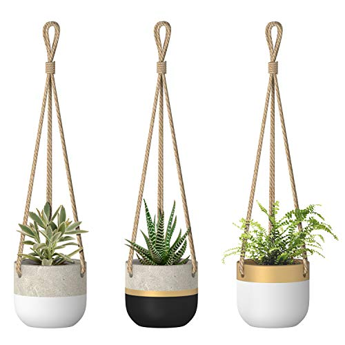 Dahey Succulent Pots Three Pack Small Hanging Planter