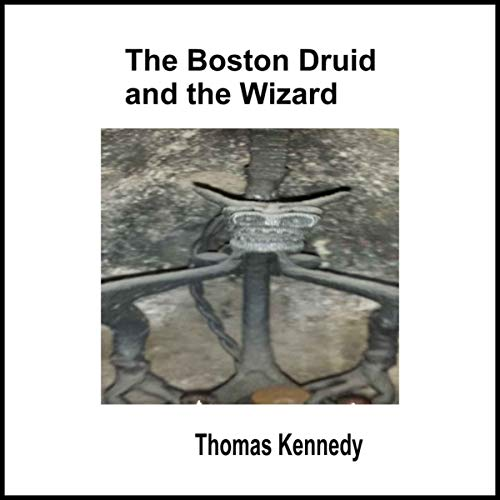 The Boston Druid and the Wizard audiobook cover art