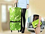Cocobuy Shopping Bag with Wheels Reusable Shopping Bags Grocery Bags Shopping Bag with Wheel Foldable Shopping Cart Reusable Shopping Bag Grocery Bag(Green B08C76MSSY)