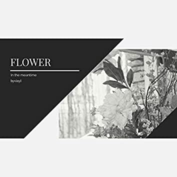 In the meantime - Flower