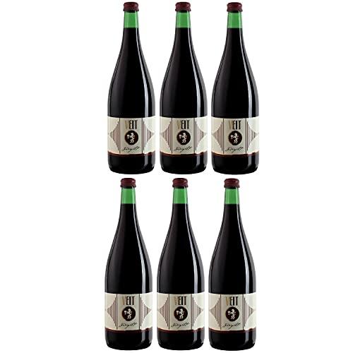Weingut Veit Zweigelt Classic Rotwein Wein trocken Österreich (6 Flaschen)