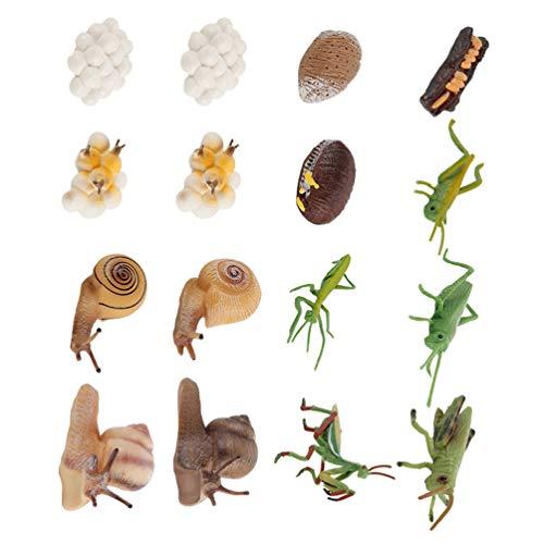 NUOBESTY 4 Juegos de 16 Figuras de Animales Mantis Religiosa Caracol Ciclo de Vida Plástico Realista Modelo de Insectos Juguetes Educativos para Niños Pequeños Niños Color Al Azar