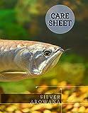 Silver Arowana: Care Sheet (English Edition)