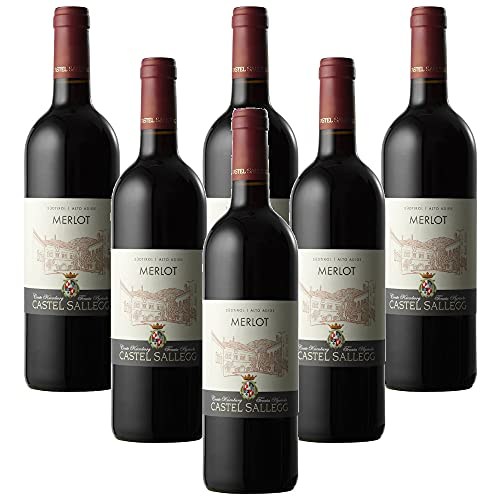 Merlot Alto Adige DOC Castel Sallegg (6 botellas 75 cl.)
