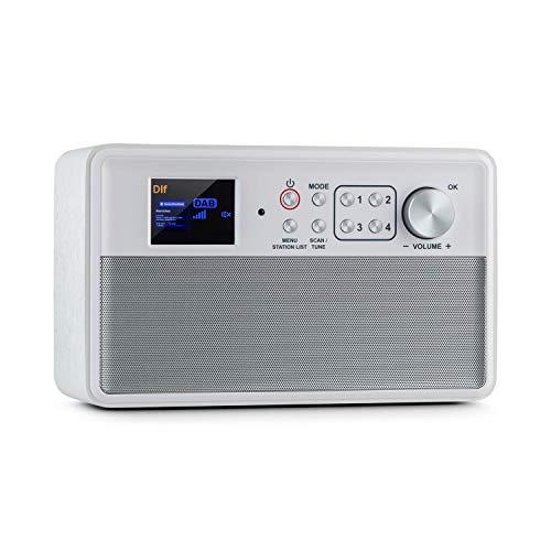 auna Nestor DAB+ Radio, bedienerfreundliches DAB+/FM Digitalradio für jedermann, 2,4