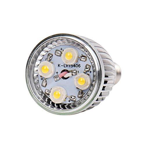 lingzhuo-shop LED-lamp 150 W dimbaar soft white, voor kroonluchter aanhanger thuis kantoor hotel bar of restaurant 10-pack elegant