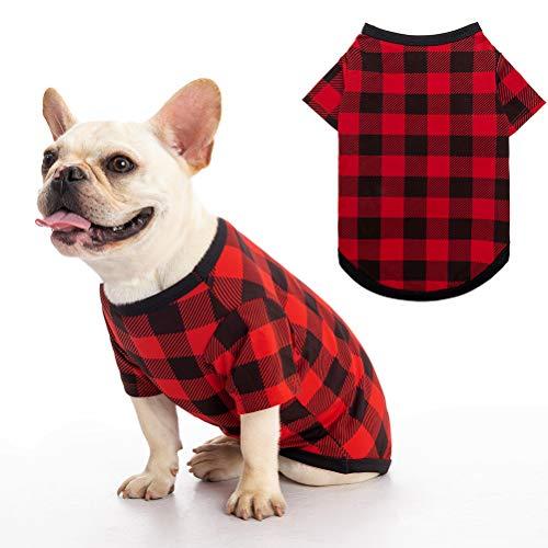 SCIROKKO Dog Shirt