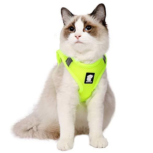 EVEL Conjunto de arnés y Correa para Gato Chaqueta de Chaleco Acolchada de Malla Suave Ajustable Reflectante a Prueba de Escapes para Mascotas Cachorro Gatito Caminata al Aire Libre