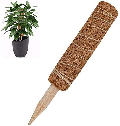 Kokospfahl, Coir Stake, Moospfahl zur Unterstützung von Zimmerpflanzen, Kokos Totempfahl (45cm, 60cm)