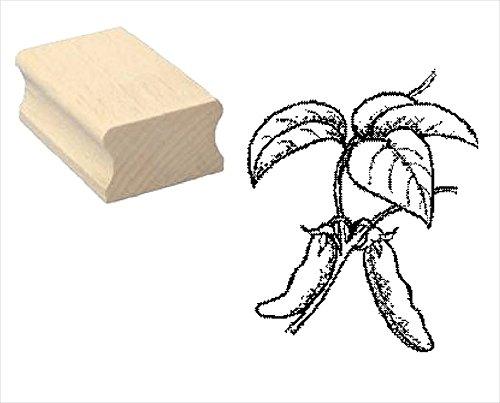 Stempel houten stempel motiefstempel SOJA SOJABZONDER » scrapbooking - plant