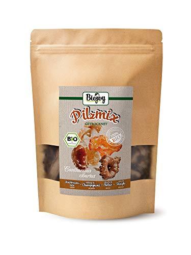 Biojoy BIO CÓCTEL de 4 variedades de setas secas - boletos, rebozuelos, trompetas de la muertey perrechicos (100 gr)