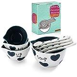 YISUYA Juego de 8 tazas medidoras y cucharas de porcelana Blue Love Type para ingredientes líquidos secos (porcelana 09)