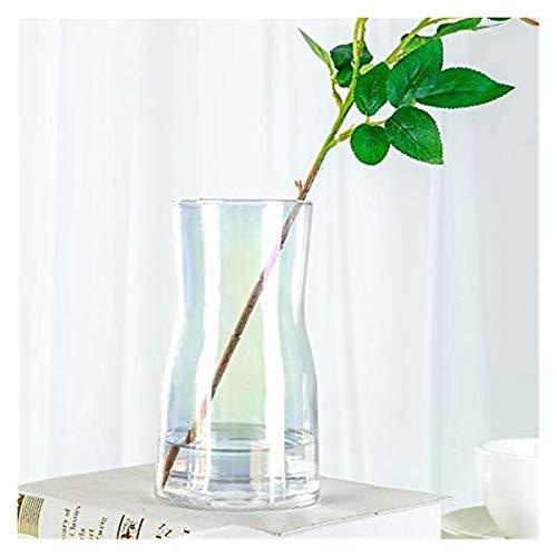 chyus Jarrones de Vidrio, jarrones Modernos de Cristal de Flores claros de Estilo Simple, para la Sala de Estar a Domicilio y decoración de la Mesa de la Oficina de la Oficina