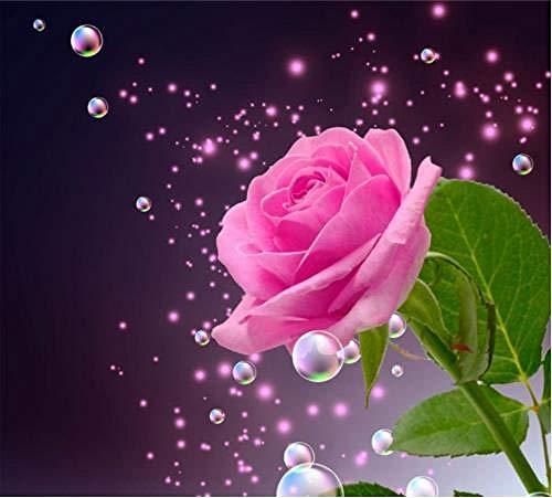 DIOPN 5D DIY Diamond Painting diamant tekening plaats roze roze complete boormachine schilderij strass kruissteek diamant borduurwerk (ronde diamant 30 * 40) 30 * 40