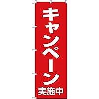 【2枚セット】のぼり キャンペーン実施中 AKB-89 のぼり 看板 ポスター タペストリー 集客 [並行輸入品]