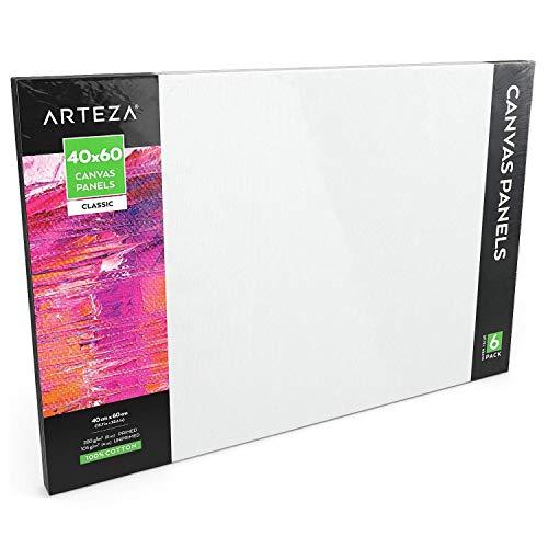Arteza Paneles de lienzo para pintar cuadros | 40x60 cm | Pack de 6 | 100% algodón | Imprimación sin ácidos | Lienzos grandes para artistas profesionales, aficionados y principiantes
