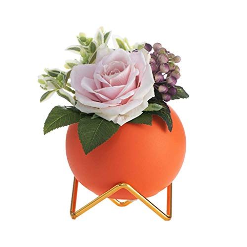 YGXR Decoración del hogar, jarrones de cerámica, Flores Decorativas, Flores secas, Flores Artificiales, Accesorios Decorativos creativos para el hogar (Color: Naranja)