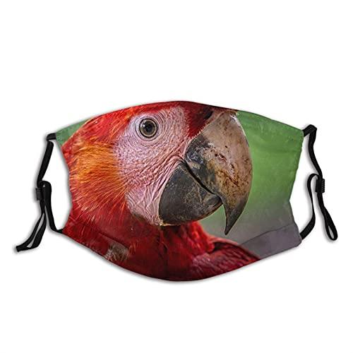 Máscara facial cómoda de moda escarlata guacamayo loro plumas rojas fondo bokeh a prueba de sol moda bandana headwear para la pesca