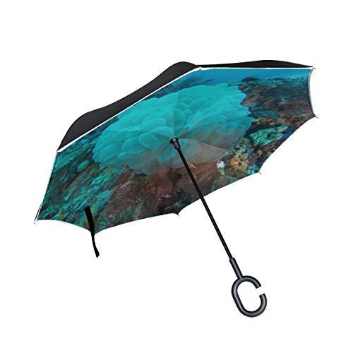 Double Layer Inverted Umbrella Inverted Windproof Wunderschöne Grape Corals In Aquarium Inverted Umbrella Für Frauen Tragbarer Taschenschirm Winddichter UV-Schutz Für Regen Mit C-förmigem Griff