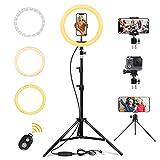 LED Ring Light 10' avec Trépied et Télécommande Bluetooth, Anneau de Lumière Selfie de Bureau avec Gradation 3 Modes D'éclairage et 10 Niveaux de Luminosité pour Vidéo Youtube (65in)