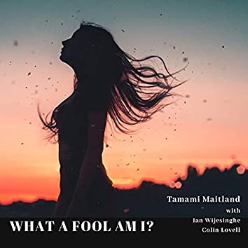 What a Fool Am I? (feat. Ian Wijesinghe & Colin Lovell)