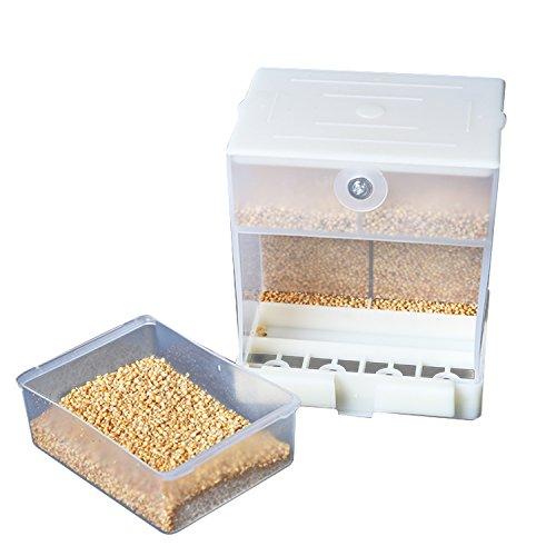 Webeauty Alimentatore Automatico Pappagallo, Mangiatoia Per Uccelli No-Mess, Contenitore Per Alimenti Per Pappagallino Canarino Pappagallino Fringuello