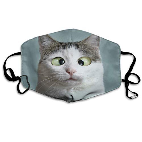 Lustige Katze beim Augenarzt Appointmet Schielen Staubschutz Mund Mund Sport Mundschutz Mundschutz