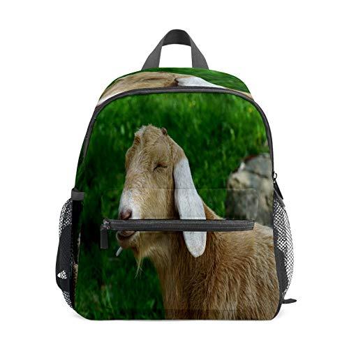 Mochila infantil para niños de 1 a 6 años de edad, mochila perfecta para niños y niñas de jardín de infancia, animal cansado y adorable.