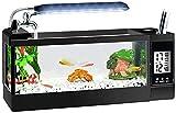 N\A AY Acuario - Mini Tanque de Pescado de Vidrio de Escritorio, lámpara de Mesa pequeña, Calendario perpetuo multifunción, Caja de Almacenamiento, Grifo (Color : M)