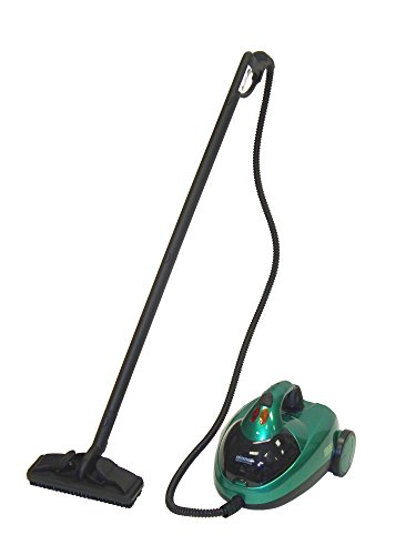 Check Out This BISSELL BigGreen Commercial BGST500T Hercules Vapor Scrub Steam Cleaner