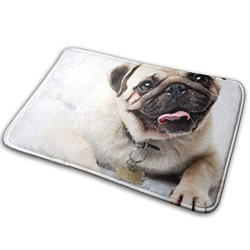 Novelty Flannel Rug Mat Area Carpet Shaggy Touch Soft Best Absorbent (40cmx60cm) Suitable for Bedroom Living Room Front Door - White Pug