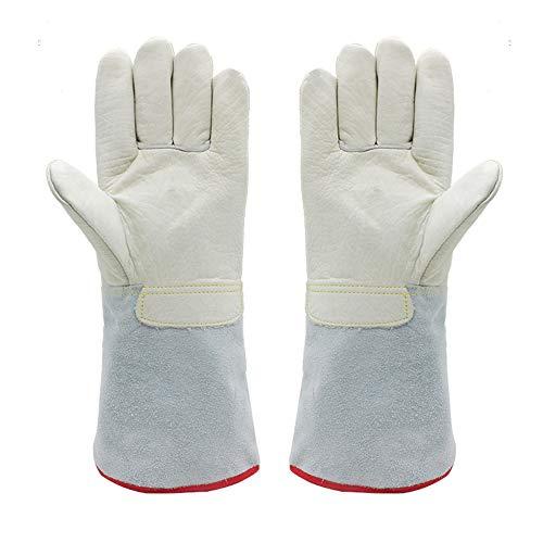 TUYU Niedrigtemperaturbeständige Handschuhe Frostschutzhandschuhe halten Temperaturen bis zu -260 °C stand – geeignet für Gefrierschrank, Kälte Garage und Labor, S: 40cm, 2