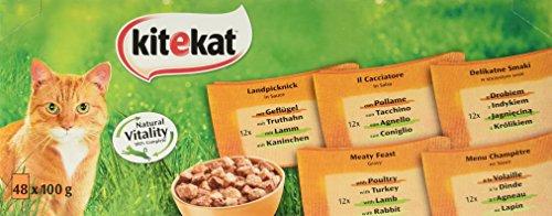 Kitekat Katzenfutter Nassfutter Landpicknick in Sauce, 48 Portionsbeutel (48 x 100g)