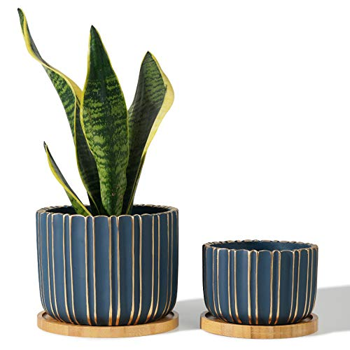 POTEY 057404 Cement Planter Pots - 5.7 + 4.7 Inch Indoor Concrete Planters Bonsai Containers with Drainage Hole & Bamboo Saucer for Plants Succulent Cactus Flowers (Set of 2, Plants NOT Included)