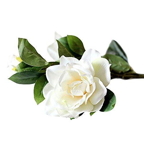 Jia HU, 1Stück Elegante Künstliche Gardenia Blumen, Pflanzen Haus Büro-Dekoration.