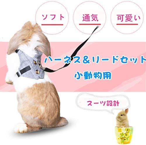 IGUGHIウサギ猫ハーネス伸縮リード調整可能小動物用お散歩用リードかわいい小動物お出かけ用品矮小ウサギに最適ペット用品小型ペットリードハーネスセット