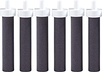 6-Count Brita Water Bottle Replacement Filters