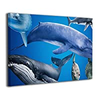 Skydoor J パネル ポスターフレーム マリンワールド 鯨 サメ インテリア アートフレーム 額 モダン 壁掛けポスタ アート 壁アート 壁掛け絵画 装飾画 かべ飾り 30×20