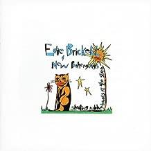Best edie brickell cd Reviews