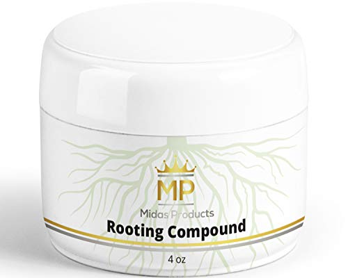 Rooting Gel For Cuttings Iba Rooting Hormone Cloning Gel For Strong Clones Key To Plant Cloning Midas Products Rooting Gel Hormone For