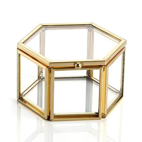 JOVIVI Durchsichtige Glas Schmuckschatullen Geometrisches Sukkulente Pflanze Box Schmuckbox für Schmuck Accessoires Geschenkbox