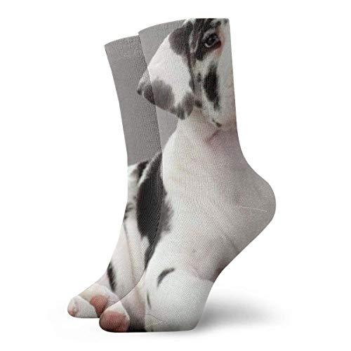 Kevin-Shop Deutsche Dogge Hund Tier Kissen Crew Socken Essential Sport Wicking Arbeit für Männer und Frauen
