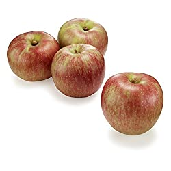 国産 つがる りんご 4個