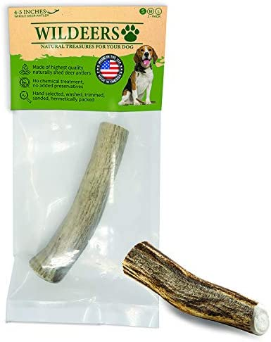 Deer Antlers for Dogs Premium Dog Antler Chews Made in USA Naturally Shed Healthy Chew Treats product image