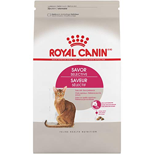 Royal Canin Savor Selective Adult Dry Cat Food, 6 lb. bag