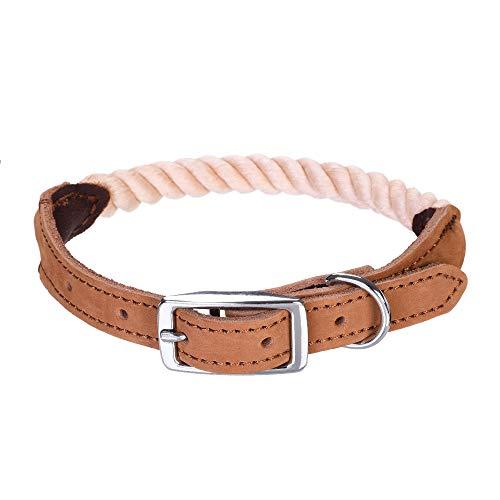 Mile High Life Collar de Perro de Cuerda de algodón de Perro con Hebilla