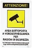 Cartello Segnalo Plastica Videosorveglianza