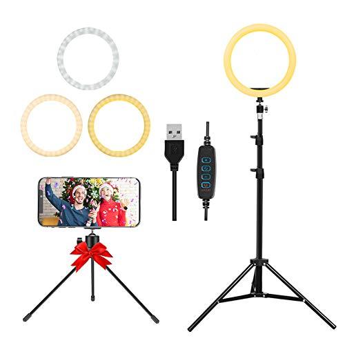 LED Ringlicht 10 Zoll mit Stativ und Telefonhalter, Flexiblem Schlauch, Stromversorgung über USB, 3000K-6500K Dimmbares Standringlicht für Make-up, Selfie und YouTube-Videoaufnahmen
