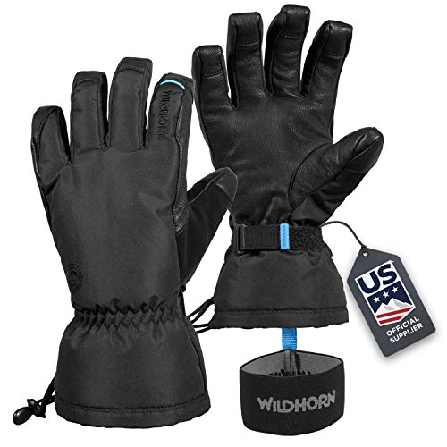 Wildhorn Tolcat Unisex Waterproof Leather Ski Gloves- Touchscreen Compatible