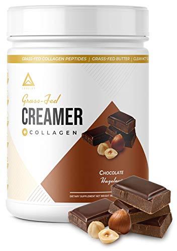 LevelUp - Grasgefütterter Keto-Milchkännchen: Kollagenprotein + C8-MCT-Öl + irische Butter  Keto Bomb BPC Kaffeesahne  Ketogene Diät Ketosis Supplement (Schokoladen-Haselnuss)